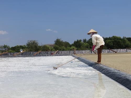 Công nghệ sản xuất muối sạch